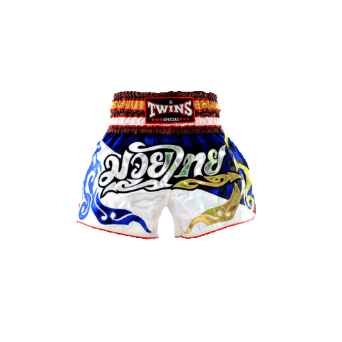 TWINS SPECIAL MUAY THAI SHORTS - NTBS-002