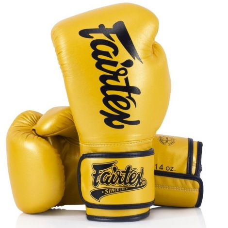 FAIRTEX BGV18 SUPER SPARRING GLOVES